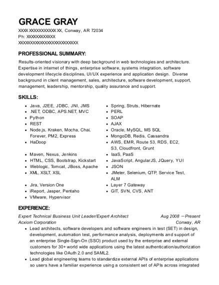 acxiom corporation expert technical business unit leader resume
