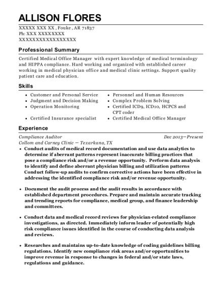 Best Compliance Auditor Resumes | ResumeHelp