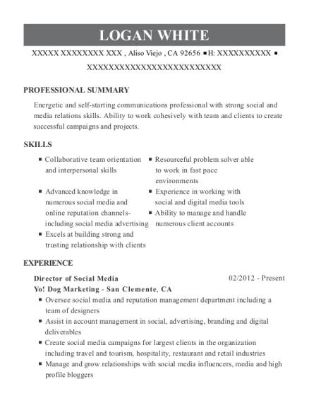 yo dog marketing director of social media resume sample aliso