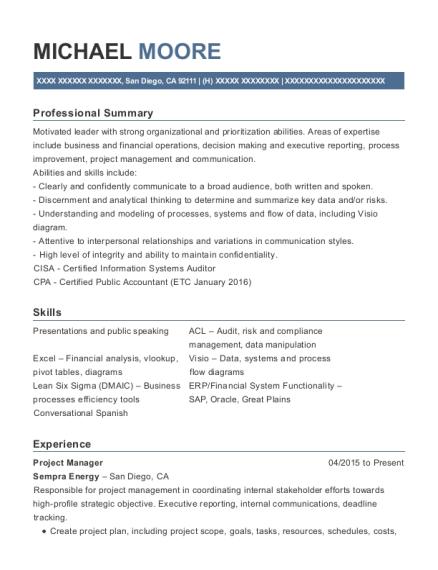 Best Internal Audit Services Resumes | ResumeHelp