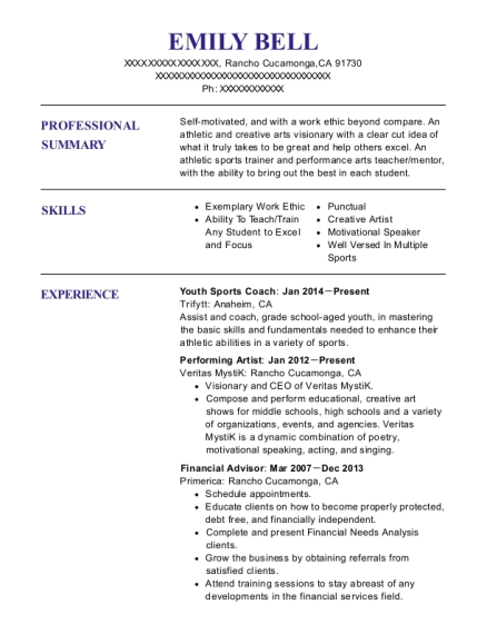 best performing artist resumes resumehelp