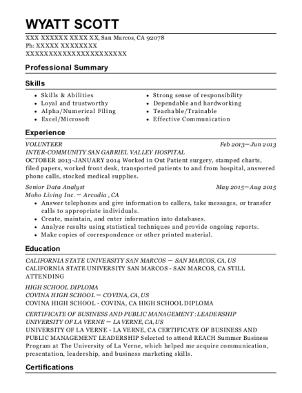 best senior data analyst resumes resumehelp