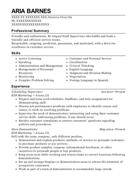 Best Scheduling Supervisor Resumes   ResumeHelp