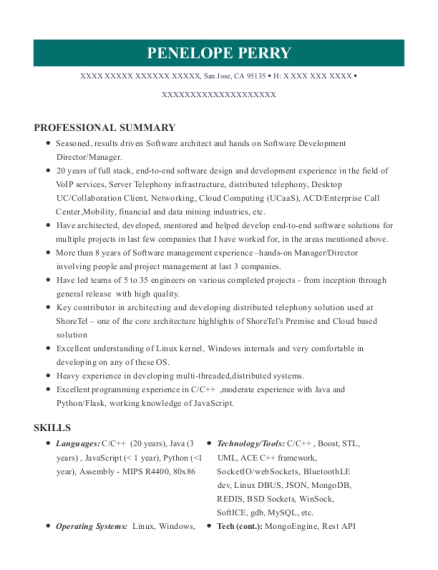 beaufiful director of engineering resume photos cv for managing