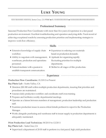 Best Print Production Technician Resumes | ResumeHelp