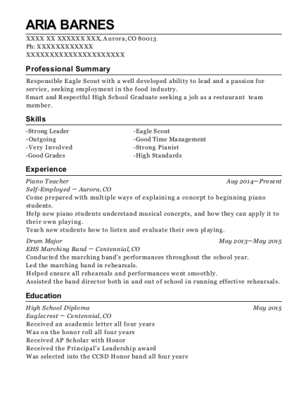 Comfortable Resume Ehs Professional Images - Example Business ...