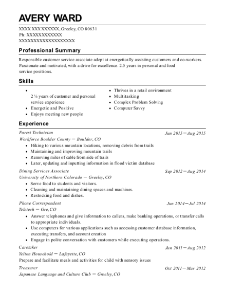 Computer savvy resume