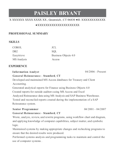 programmers resumes