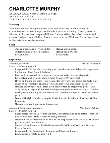 support manager resumes