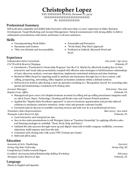 rodan   fields independent sales consultant resume sample