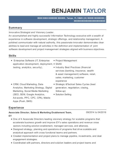 best strategic consultant resumes resumehelp