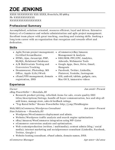 best ecommerce manager resumes resumehelp