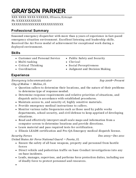 view resume - Security Forces Resume