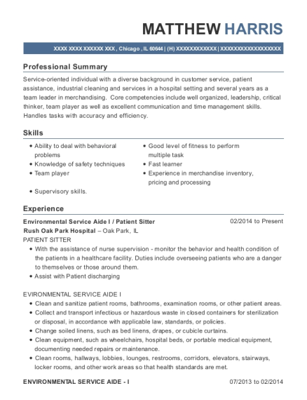 resume examples team leader