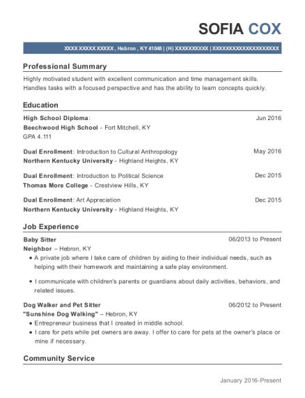 View Resume Baby Sitter