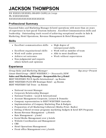 Best Group Sales And Marketing Manager Resumes   ResumeHelp
