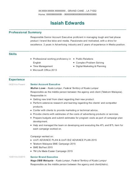 Best Brand Executive Resumes Resumehelp