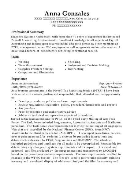 Best Systems Accountant Resumes | ResumeHelp