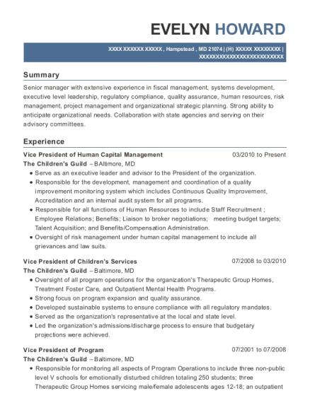 Best Vice President Of Human Capital Management Resumes | ResumeHelp