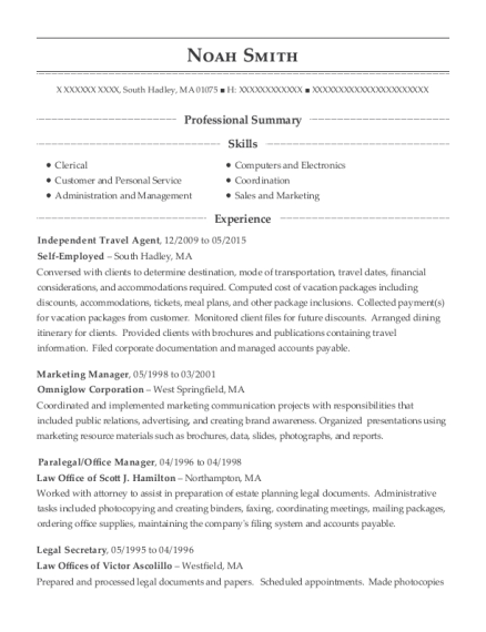 Telecommute Independent Travel Agent Resume Sample - New York New ...