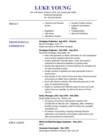 Norcom Mortgage Originator Resume Sample