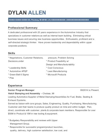 senior program manager resume