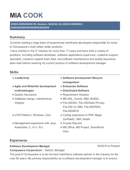 Best Software Support Team Lead Resumes | ResumeHelp