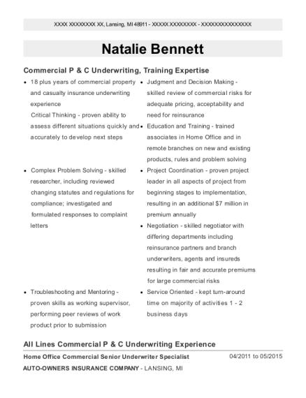 Best Commercial Underwriter Resumes | ResumeHelp