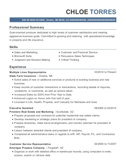 state farm insurance multiple lines representative resume