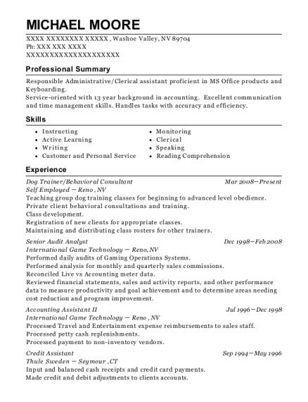 michael moore audit analyst sample resume - Audit Analyst Sample Resume