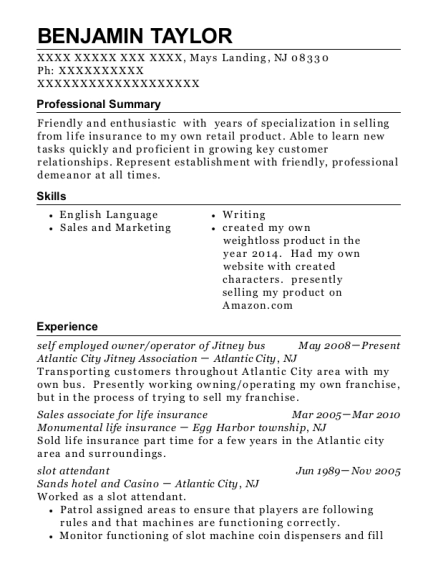 the d slot attendant resume sample