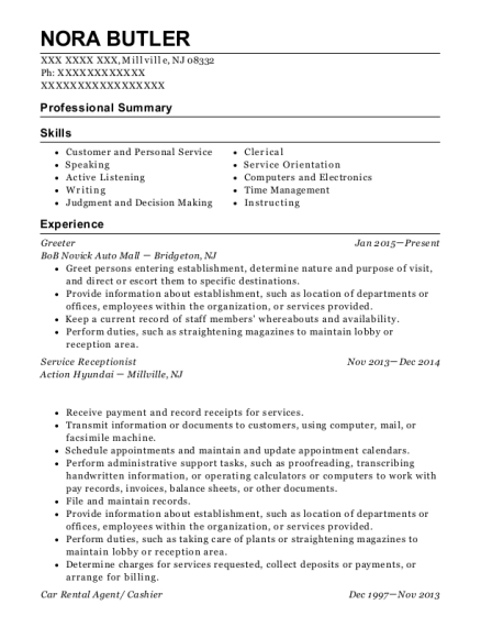 Car Rental Agent Receptionist Customize Resume View