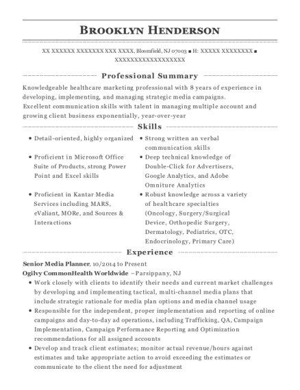Best Assistant Media Planner Resumes | ResumeHelp