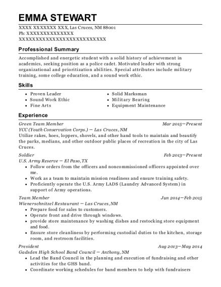best green team member resumes resumehelp