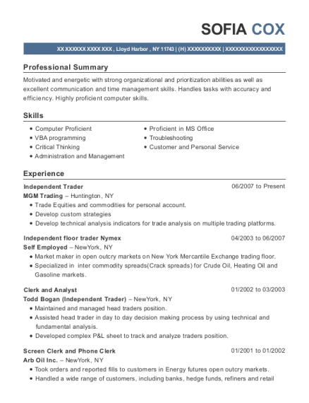 Best Clerk And Analyst Resumes