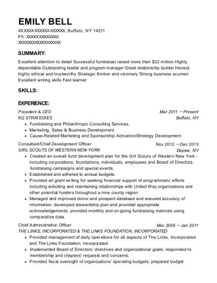 best chief development officer resumes resumehelp