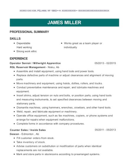 inside sales resume
