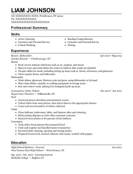 resume for a dishwasher