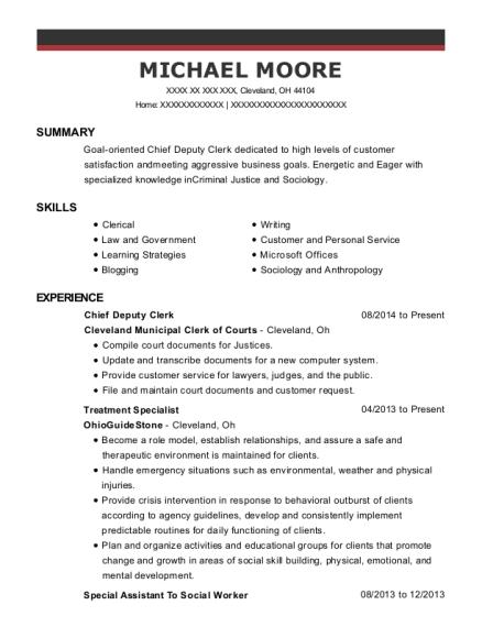 Best Chief Deputy Clerk Resumes | ResumeHelp