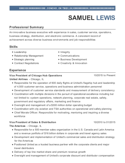 Best Global Account Manager Resumes | ResumeHelp