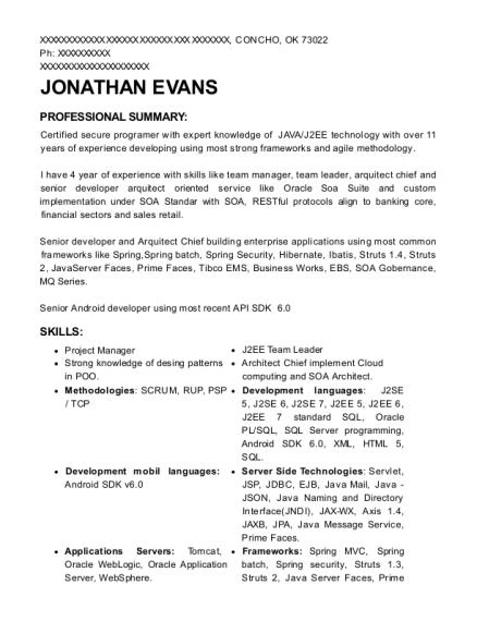 best j2ee architect resumes resumehelp