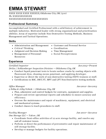 ndt resume samples