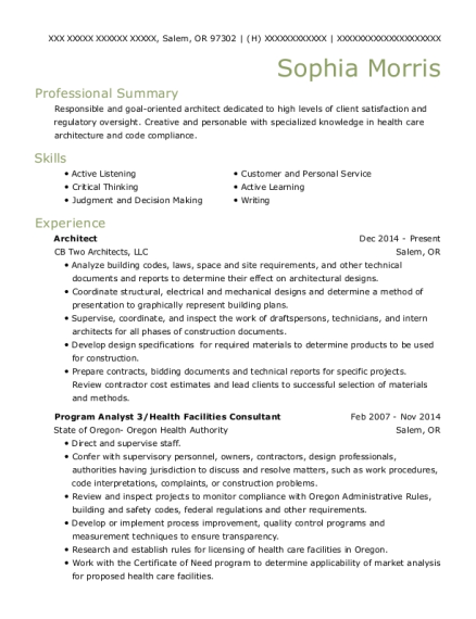 lead architect resume