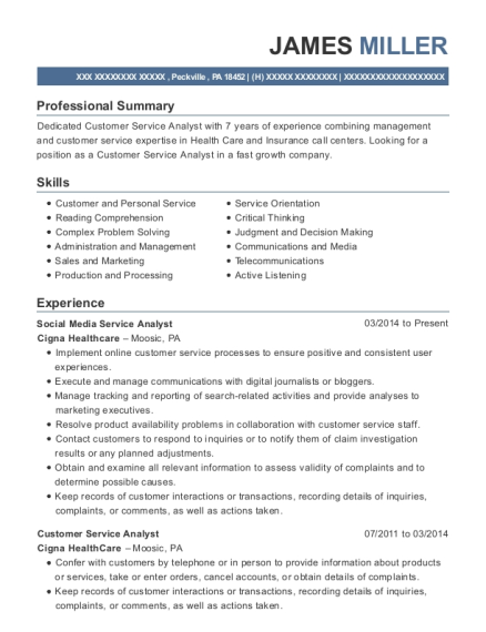 best customer service analyst resumes resumehelp