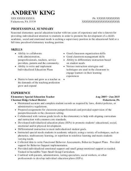 View Resume. Elementary Special Education Teacher