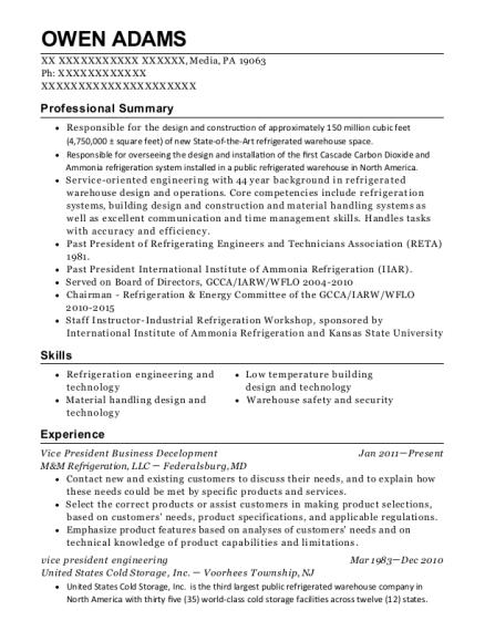 Best Assistant Vice President Engineering Resumes ResumeHelp