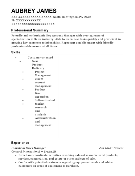 industrial sales manager resume tier brianhenry co