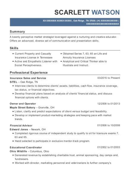 edgemarc energy holdings  llc marketing managers resume
