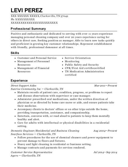 best domestic engineer resumes resumehelp