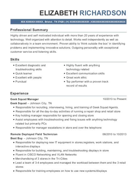 geek squad resume